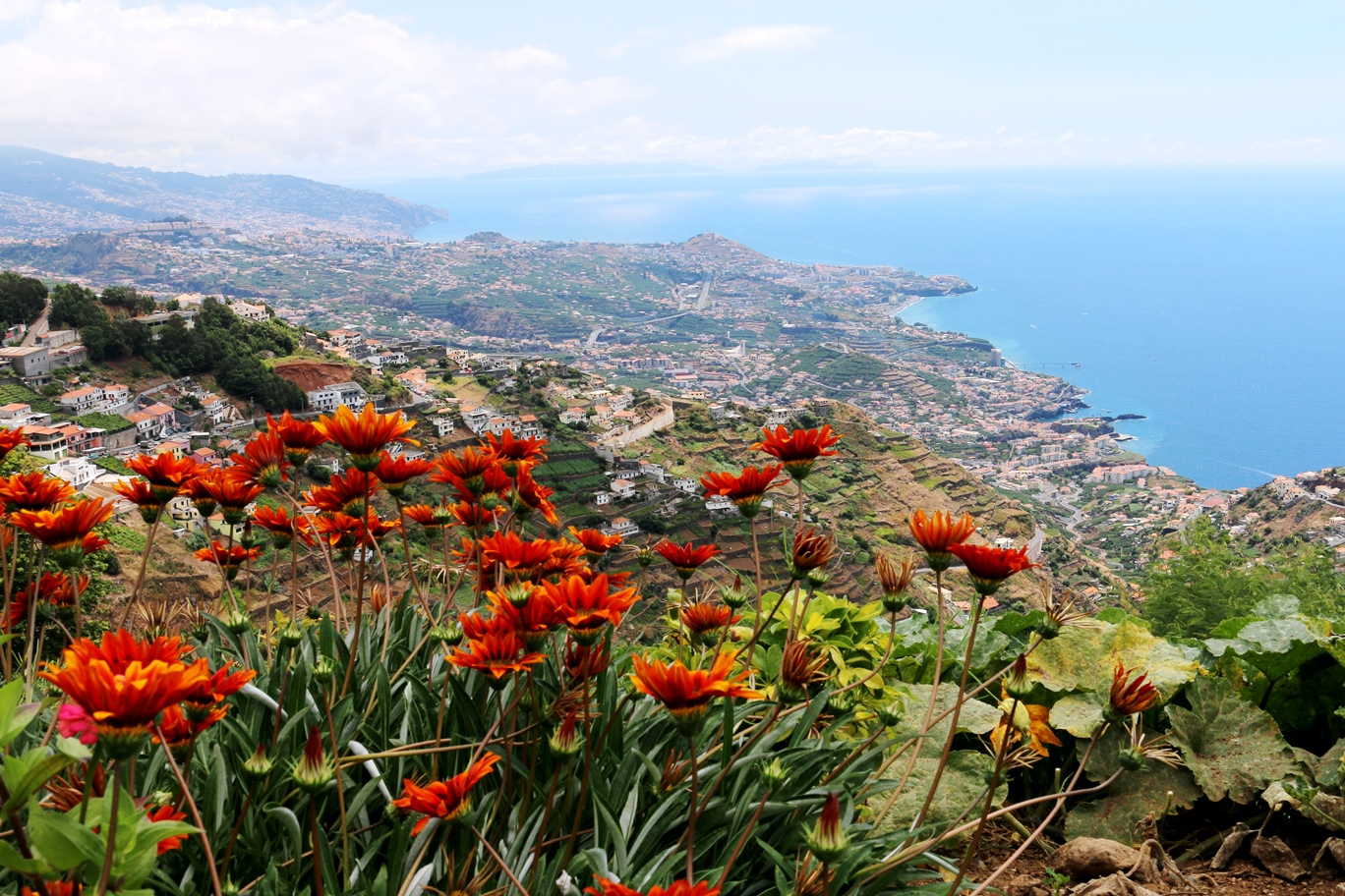 Funchal - Vistas de Madeira mientras manejas