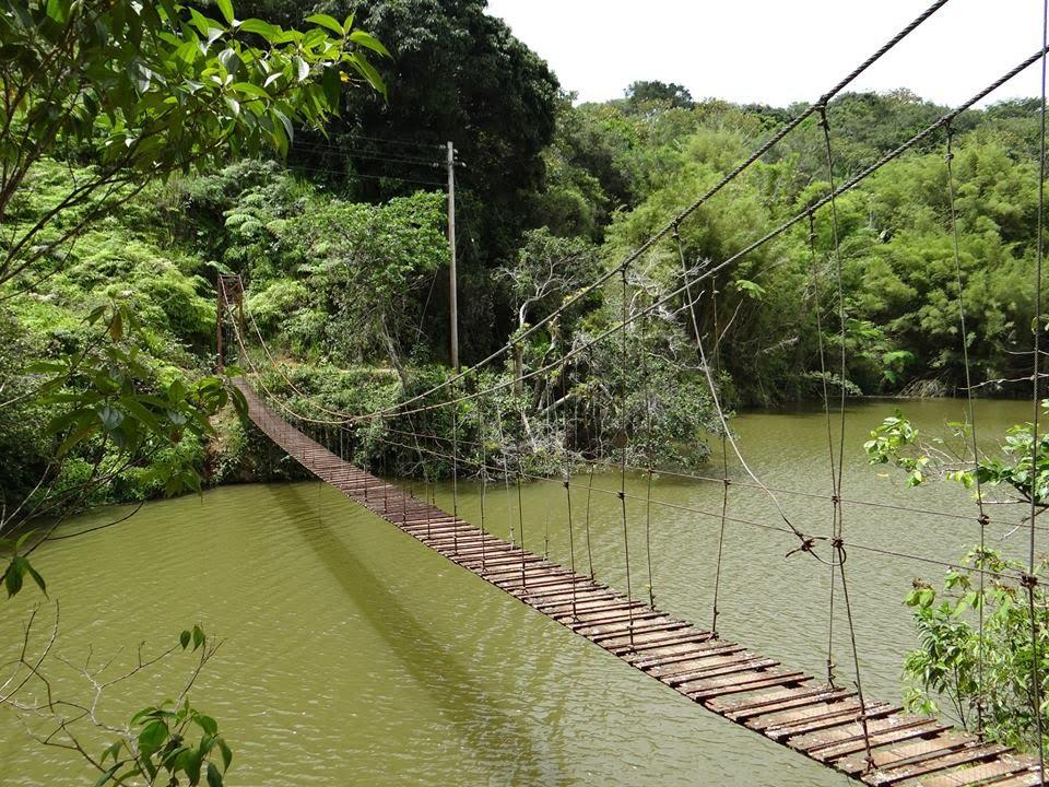 Puente La Hamaca, Lago Garzas